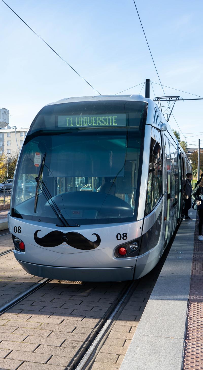 tram moustachu pour movember